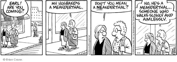 Comic Strip Brian Crane  Pickles 2008-05-31 husband