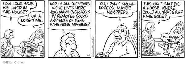 Comic Strip Brian Crane  Pickles 2008-06-03 husband
