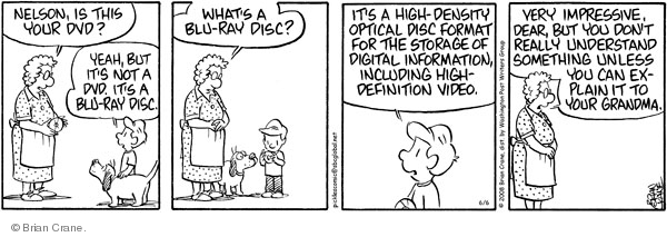 Comic Strip Brian Crane  Pickles 2008-06-06 grandson