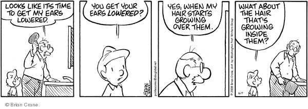 Comic Strip Brian Crane  Pickles 2008-06-07 male grooming