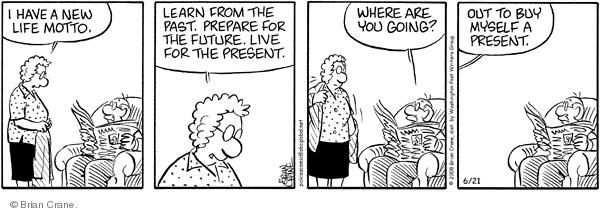 Comic Strip Brian Crane  Pickles 2008-06-21 husband