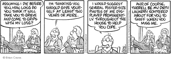 Comic Strip Brian Crane  Pickles 2008-06-27 husband