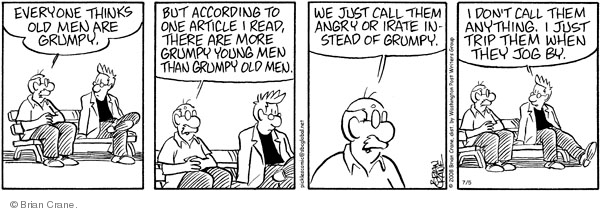 Comic Strip Brian Crane  Pickles 2008-07-05 young man