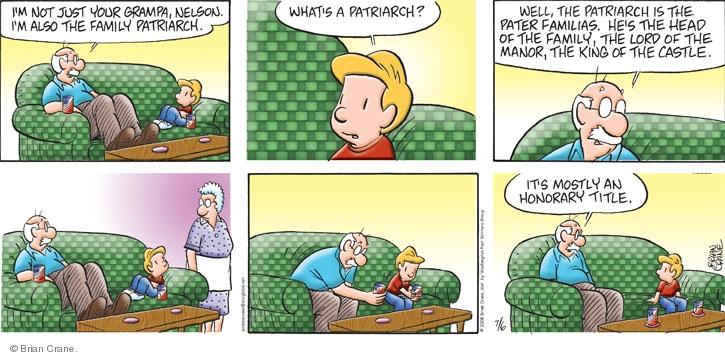 Comic Strip Brian Crane  Pickles 2008-07-06 husband
