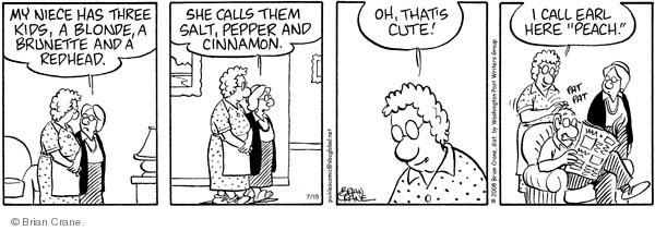 Comic Strip Brian Crane  Pickles 2008-07-15 husband