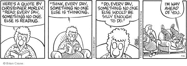 Comic Strip Brian Crane  Pickles 2008-07-16 husband