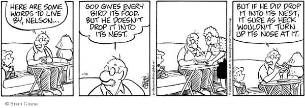 Comic Strip Brian Crane  Pickles 2008-07-18 husband