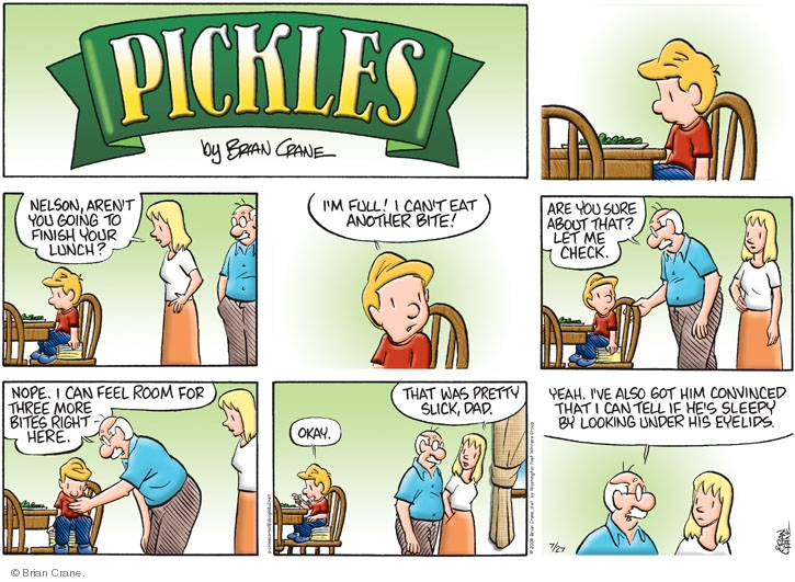 Comic Strip Brian Crane  Pickles 2008-07-27 check