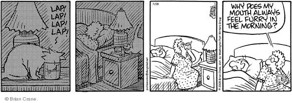 Comic Strip Brian Crane  Pickles 2008-07-28 night