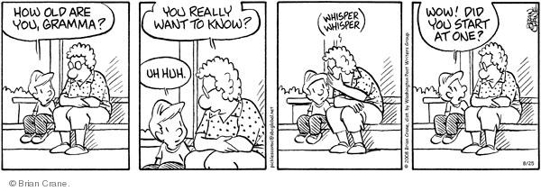 Comic Strip Brian Crane  Pickles 2008-08-25 grandchild