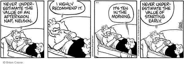 Comic Strip Brian Crane  Pickles 2008-09-01 underestimate
