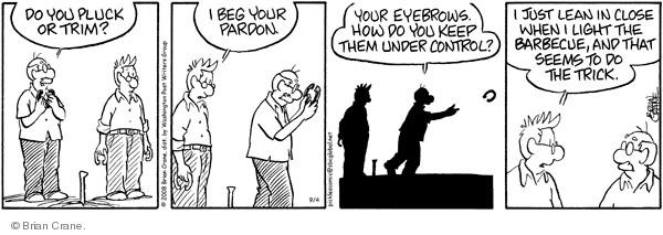 Comic Strip Brian Crane  Pickles 2008-09-04 did the trick