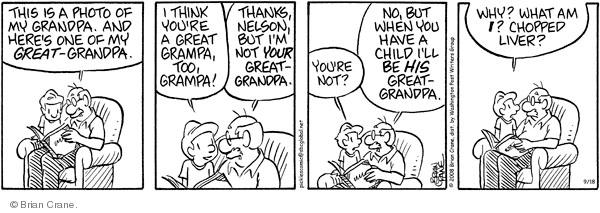 Comic Strip Brian Crane  Pickles 2008-09-18 memory