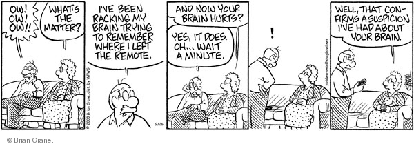 Comic Strip Brian Crane  Pickles 2008-09-26 husband