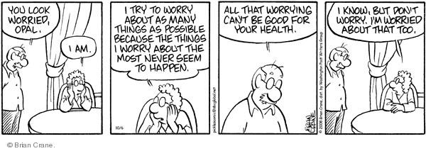 Comic Strip Brian Crane  Pickles 2008-10-06 anxious