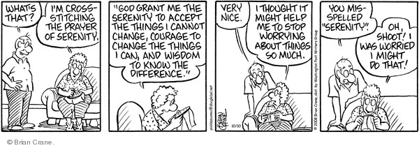 Comic Strip Brian Crane  Pickles 2008-10-10 husband
