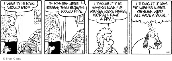 Comic Strip Brian Crane  Pickles 2008-10-14 husband