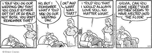 Comic Strip Brian Crane  Pickles 2008-10-28 romance