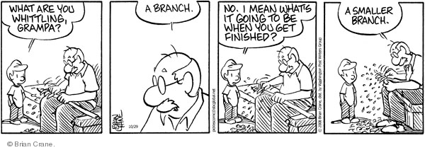 Comic Strip Brian Crane  Pickles 2008-10-29 shape