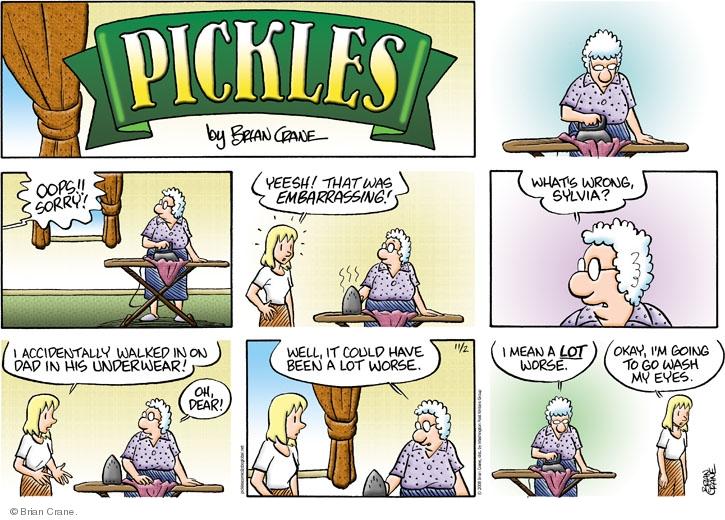 Comic Strip Brian Crane  Pickles 2008-11-02 worse