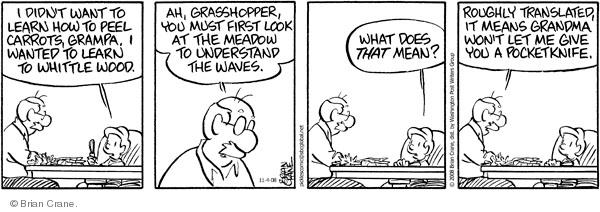 Comic Strip Brian Crane  Pickles 2008-11-04 roughly