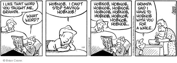 Comic Strip Brian Crane  Pickles 2008-11-08 vernacular