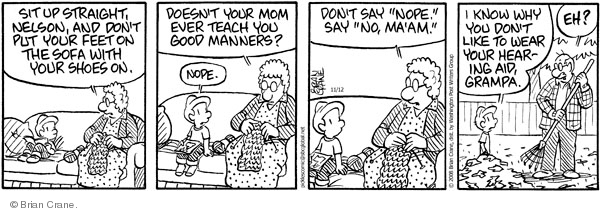Comic Strip Brian Crane  Pickles 2008-11-12 hearing loss