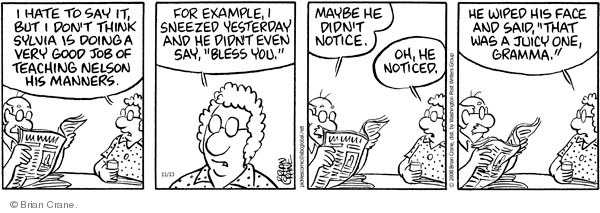 Comic Strip Brian Crane  Pickles 2008-11-13 elder
