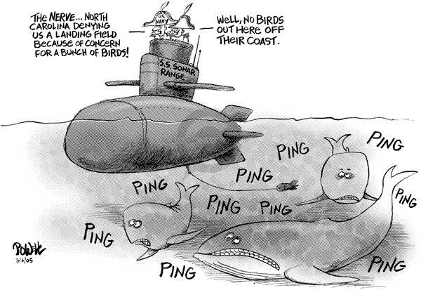 Dwane Powell  Dwane Powell's Editorial Cartoons 2005-03-09 environment