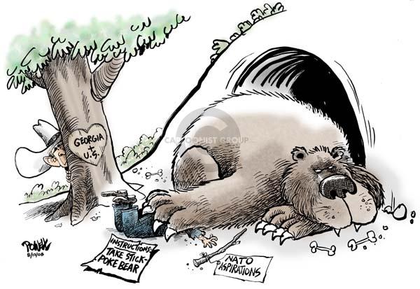 Cartoonist Dwane Powell  Dwane Powell's Editorial Cartoons 2008-08-12 bear