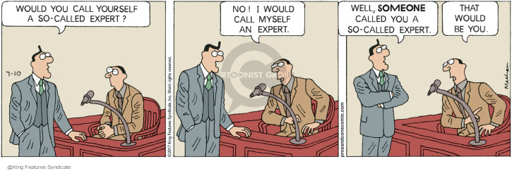 Would you call yourself a so-called expert? No! I would call myself an expert. Well, someone called you a so-called expert. That would be you.