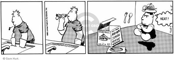 Comic Strip Sam Hurt  Queen of the Universe 1990-06-05 child