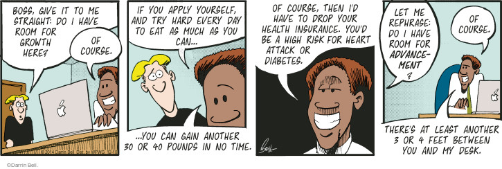 Comic Strip Darrin Bell  Rudy Park 2014-12-10 insurance coverage