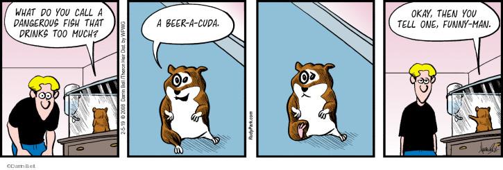 Comic Strip Darrin Bell  Rudy Park 2019-02-05 joke