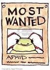 Cartoonist Signe Wilkinson  Signe Wilkinson's Gardening Images 1999-05-01 botanical