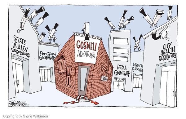 Cartoonist Signe Wilkinson  Signe Wilkinson's Editorial Cartoons 2011-01-28 oversight