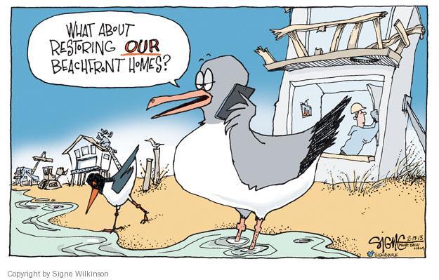 Cartoonist Signe Wilkinson  Signe Wilkinson's Editorial Cartoons 2013-02-19 rebuild