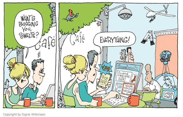 Signe Wilkinson  Signe Wilkinson's Editorial Cartoons 2013-06-23 internet privacy