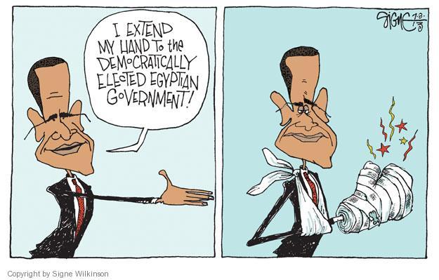 Signe Wilkinson  Signe Wilkinson's Editorial Cartoons 2013-07-08 government revolution