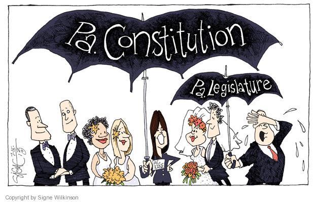 Signe Wilkinson  Signe Wilkinson's Editorial Cartoons 2013-07-15 constitutional
