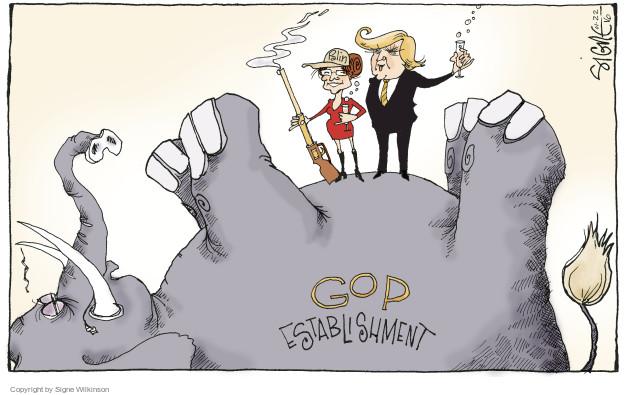Palin. GOP Establishment.