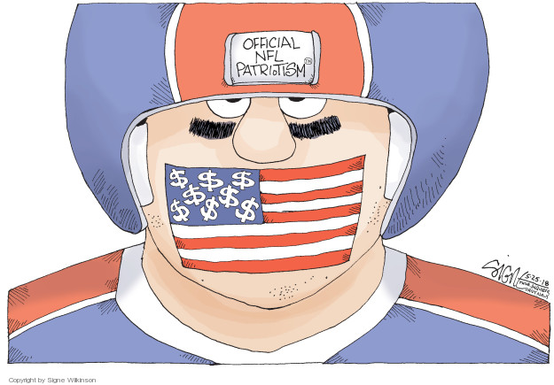 Official NFL Patriotism. $$$$$$$$