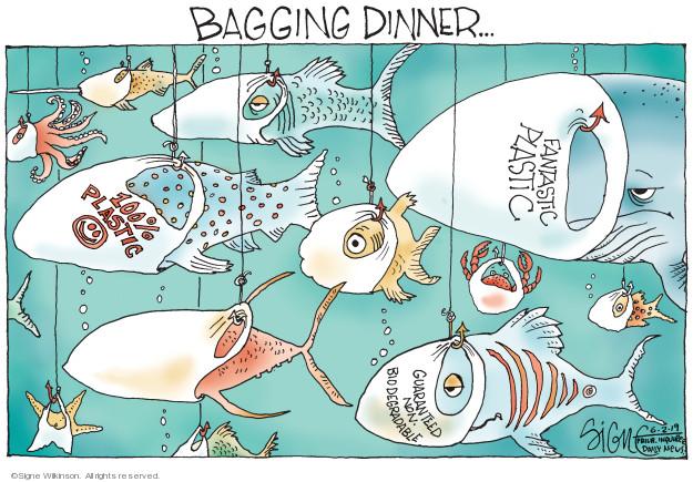 Bagging dinner … 100% plastic. Fantastic plastic. Guaranteed non-biodegradable.