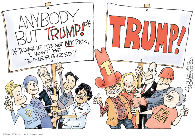 Cartoonist Signe Wilkinson  Signe Wilkinson's Editorial Cartoons 2020-01-30 2020 election