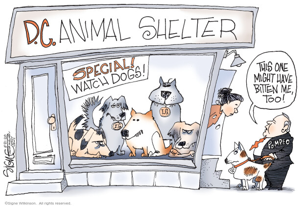 Cartoonist Signe Wilkinson  Signe Wilkinson's Editorial Cartoons 2020-05-21 presidential