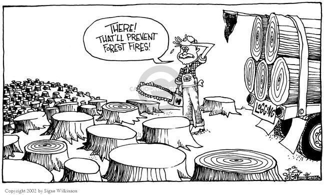 Signe Wilkinson  Signe Wilkinson's Editorial Cartoons 2002-08-22 land