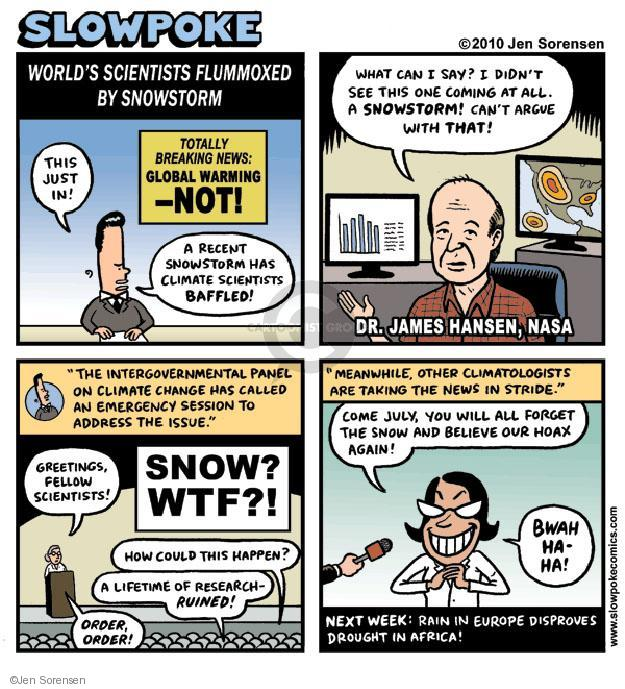 """Skowpoke. Worlds Scientists Flummoxed by Snowstorm. This just in! A recent snowstorm has climate scientists baffled! Totally Breaking News: Global Warming - NOT! What can I say? I didn't see this one coming at all. A SNOWSTORM! Cant argue with that. Dr. James Hansen, NASA. """"The intergovernmental panel on climate change has called an emergency session to address the issue."""" Greetings, fellow scientists! SNOW? WTF?! How could this happen? A lifetime of research - ruined! Order, order! """"Meanwhile, other climatologists are taking the news in stride."""" Come July, you will all forget the snow and believe our hoax again! BWAH HA-HA! Next week: Rain in Europe disproves drought in Africa!"""