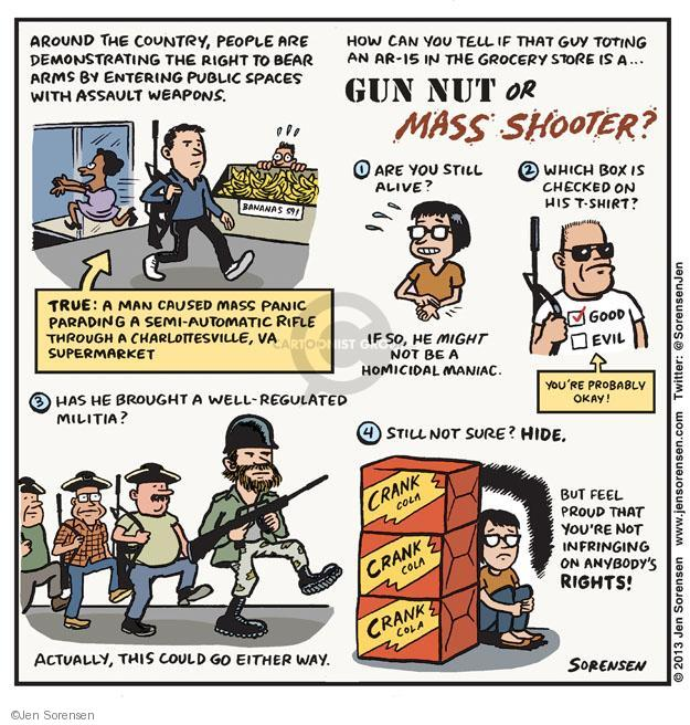 Jen Sorensen  Jen Sorensen's Editorial Cartoons 2013-02-11 assault weapon