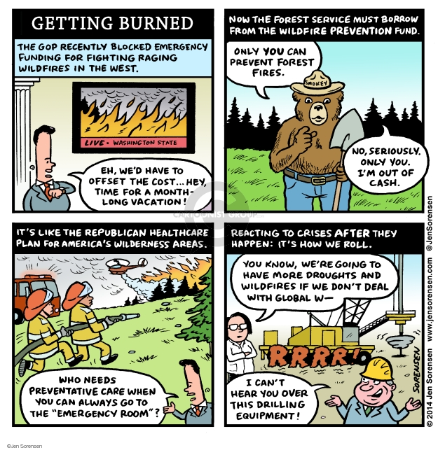Cartoonist Jen Sorensen  Jen Sorensen's Editorial Cartoons 2014-08-11 state legislation