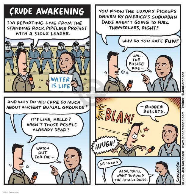 Jen Sorensen  Jen Sorensen's Editorial Cartoons 2016-11-28 journalist